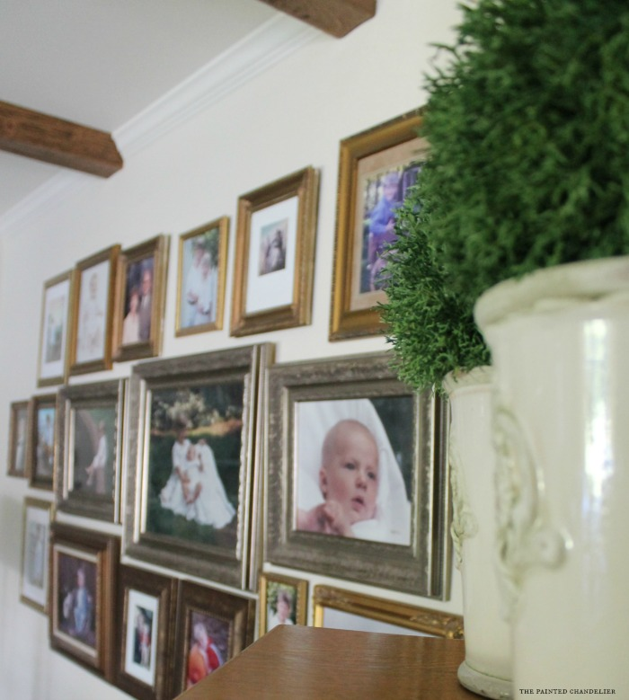 green-spheres-in-pots-family-gallery-wall