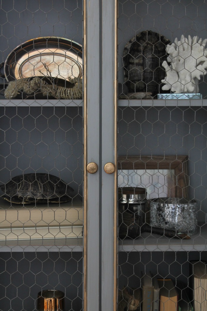 front-of-gray-and-gold-book-cabinet-with-chicken-wire