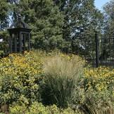M10– Morris Arboretum of the University of Pennsylvania