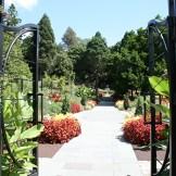 M14– Morris Arboretum of the University of Pennsylvania