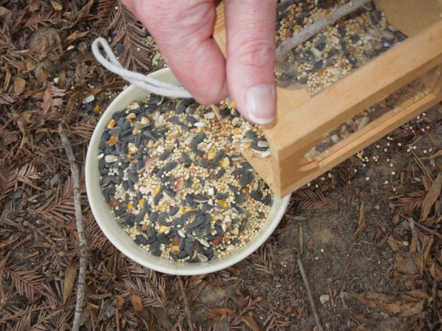 Filling up top bowl with birdseed