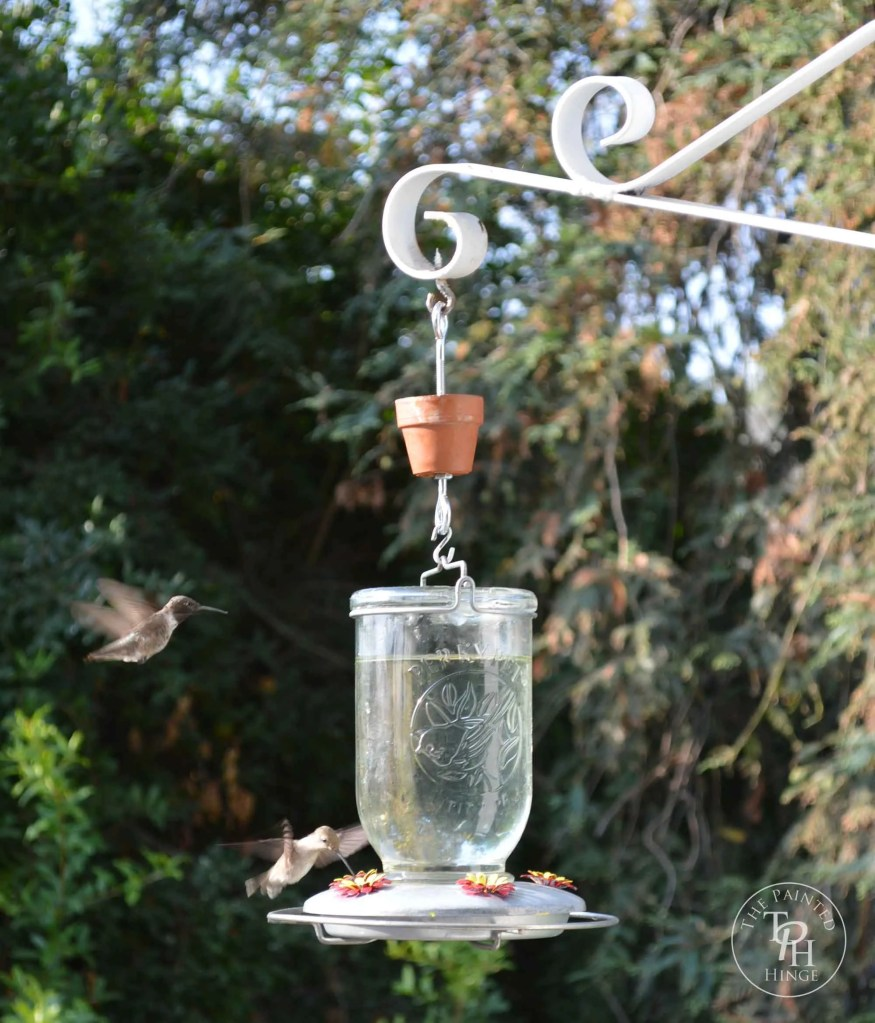 DIY Hummingbird Feeder Ant Guard