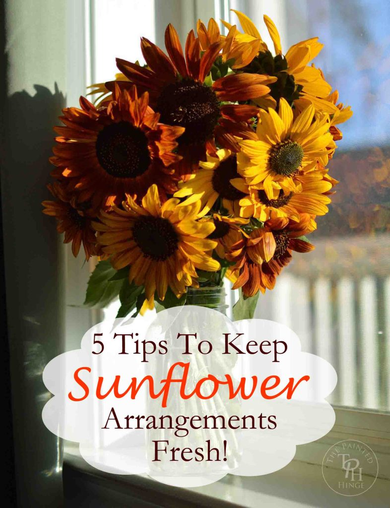 5 Tips On How To Keep Sunflowers Alive And Fresh