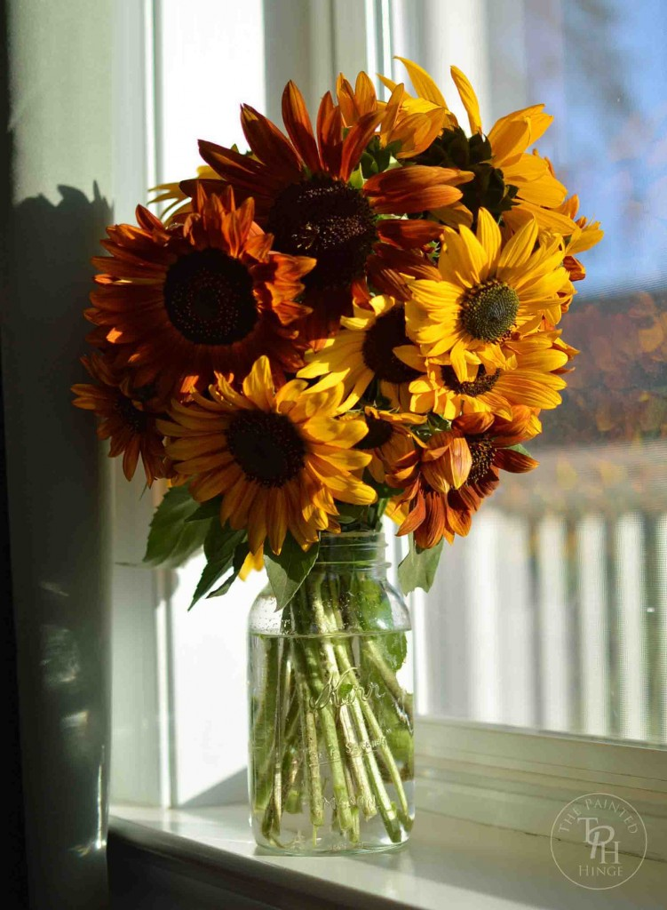 5 Tips To Keep Sunflowers Fresh