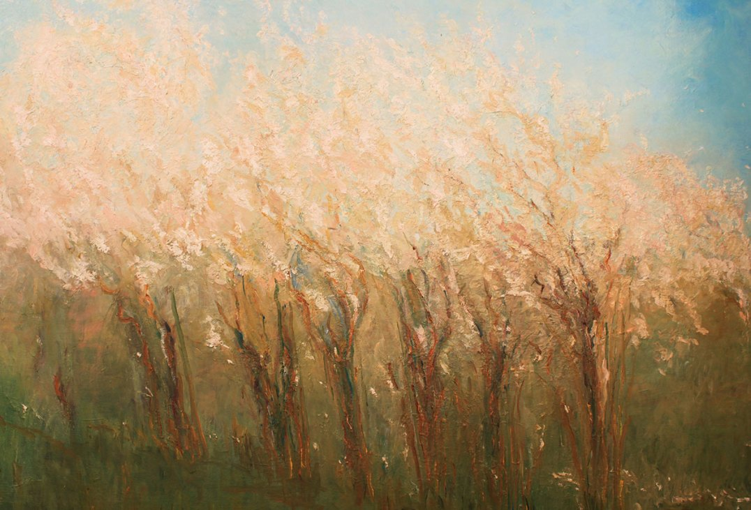 Sally-Trueman-Almond-Tree-Oil2