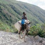 Haiti 2013 073
