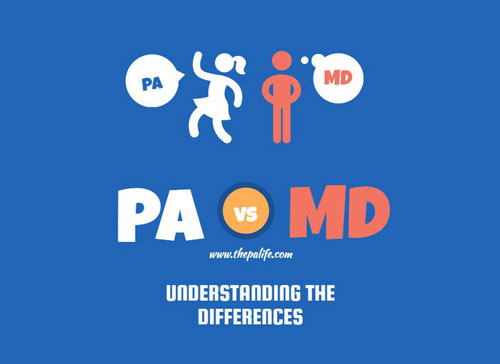 Infographic PA VS MD Understanding the Differences  The Physician Assistant Life
