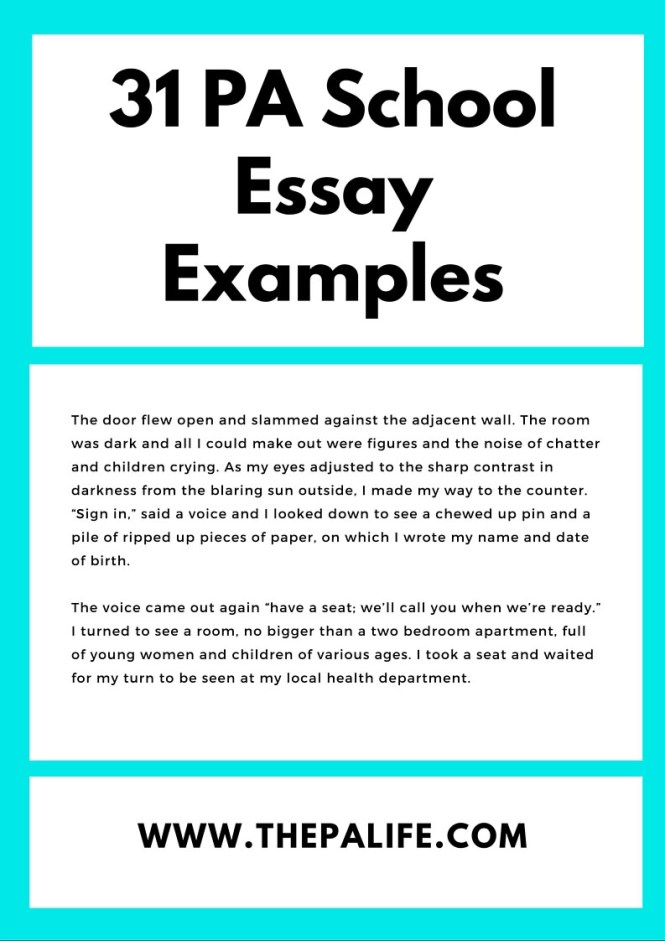 Self Reflective Essay Examples  Pros And Cons Of Gun Control Essay also Nobody Is Perfect Essay Essay On My School In English Objective In Resume For  Write Introduction Paragraph Essay