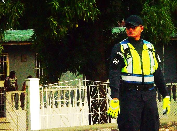cops 3