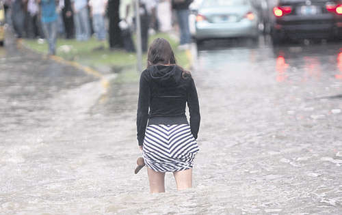 Trump's flood