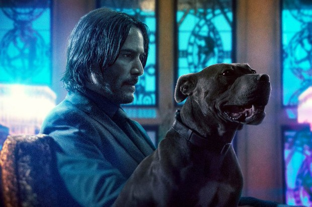 John wick and the dog