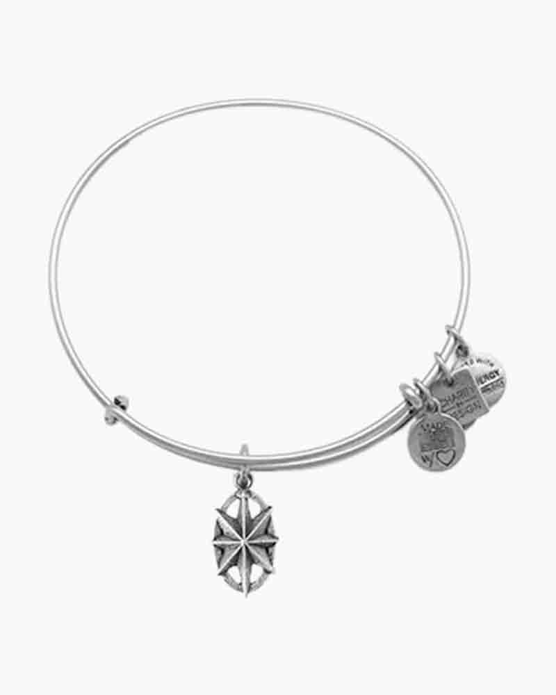 Alex and Ani Exclusive 2014 North Star Rafaelian Silver