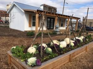 Barn and garden