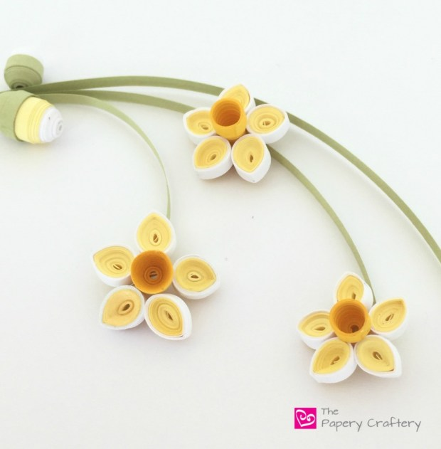 How to make simple quilling paper flowers - daffodils and flower buds, Quilling Paper Flower Close UP