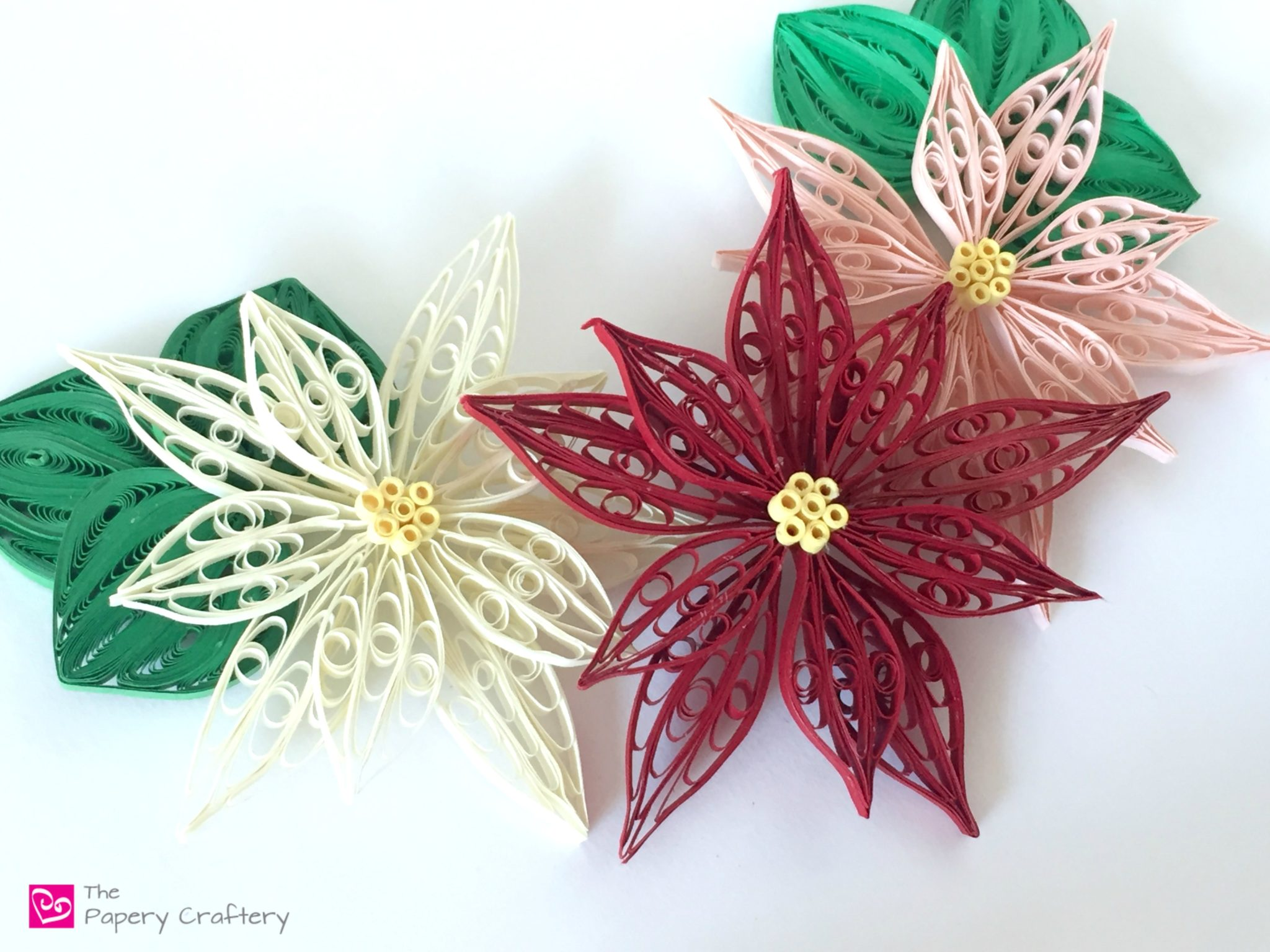 Quilling Paper Poinsettia Flowers The Papery Craftery