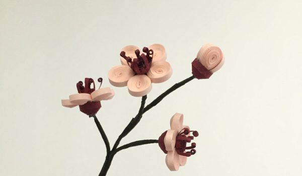 Quilling Paper Cherry Blossoms ~ One of the first signs of the spring season in quilling! || www.ThePaperyCraftery.com
