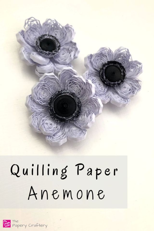 Quilling Paper Anemone Flowers - Bold black and white blossoms made with crimped paper petals | ThePaperyCraftery.com