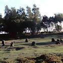Nine Ladies stone circle in Stanton Moor