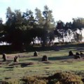 Nine Ladies stone circle in Stanton Moor