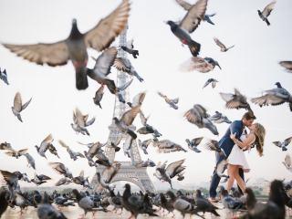 Couple photos Paris 2017 – Couple kissing with birds flying around them in Paris