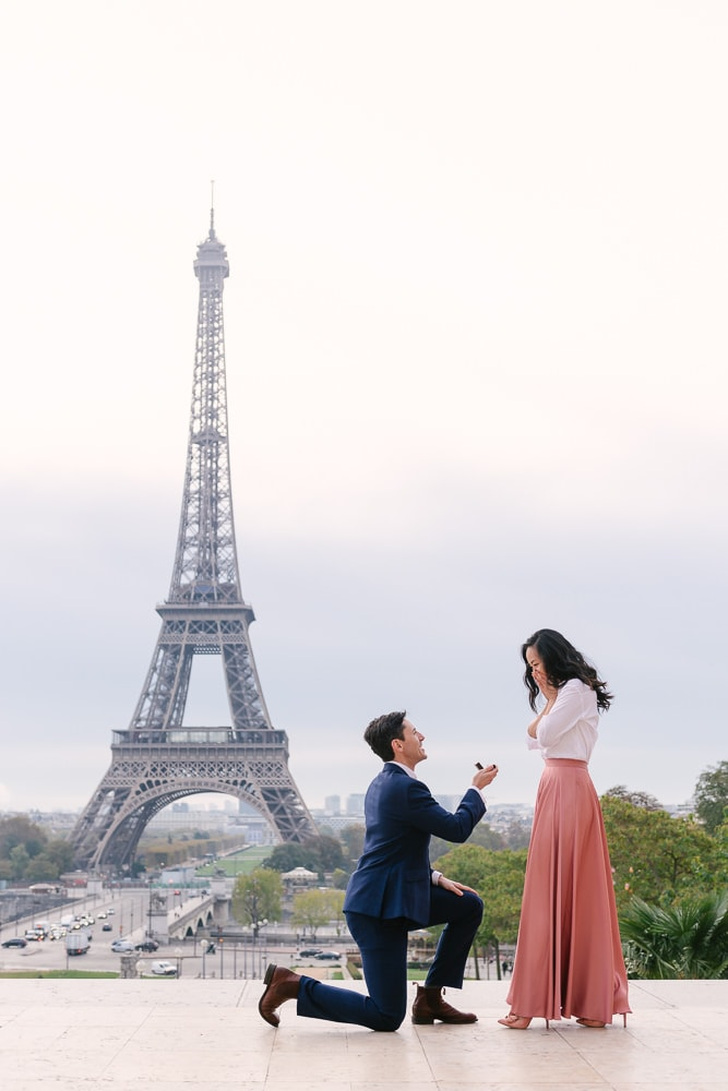 Marriage proposal in Paris