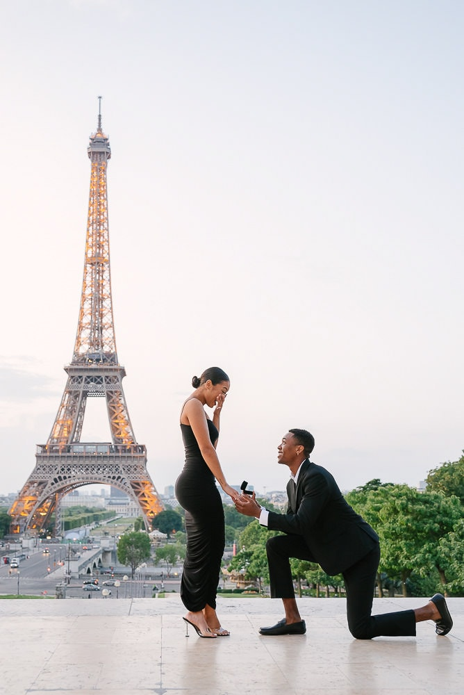Eiffel Tower proposal in Paris by Trocadero