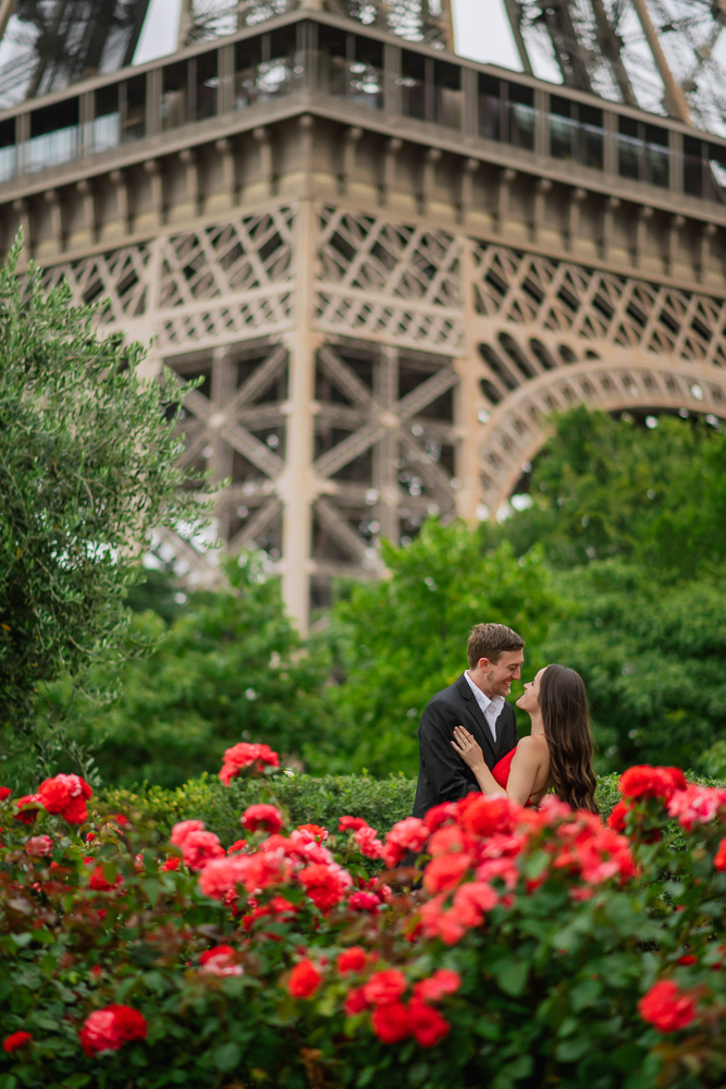 Red roses and the Eiffel tower