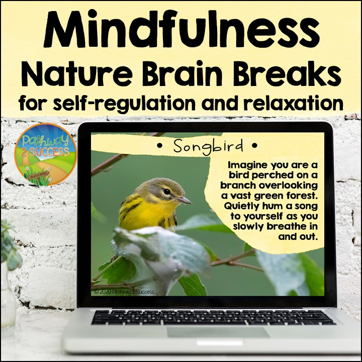 Mindful brain breaks are a helpful tool to help improve focus, encourage self-regulation, and just give a fresh start. Use these mindfulness brain breaks in the classroom or virtually to help students to do their best!