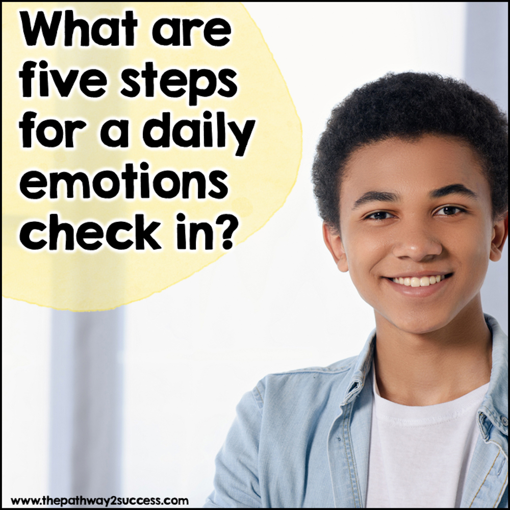 What are five steps for a daily emotions check in?