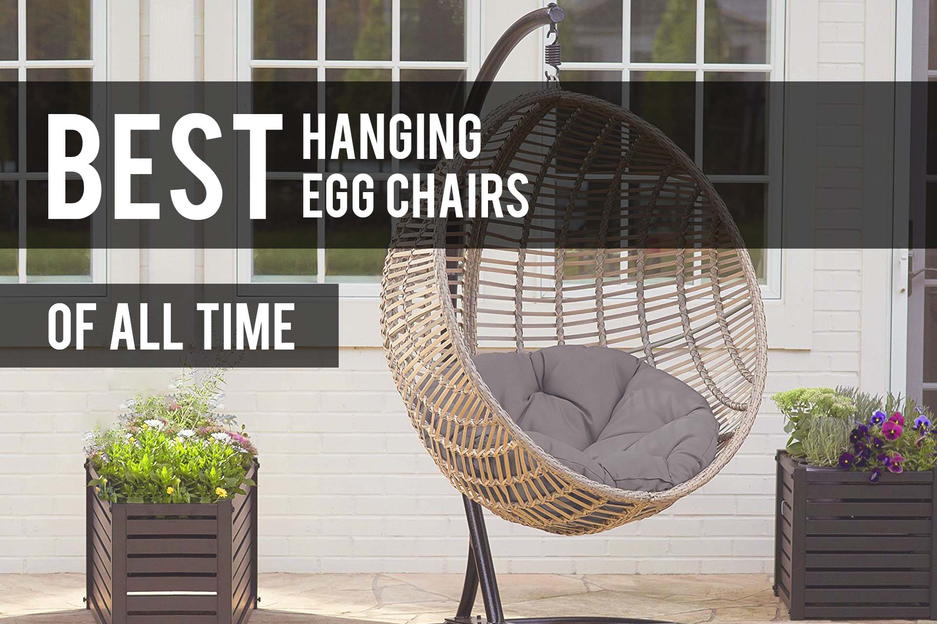 Stupendous Best Hanging Egg Chairs 2019 Reviews The Patio Pro Andrewgaddart Wooden Chair Designs For Living Room Andrewgaddartcom