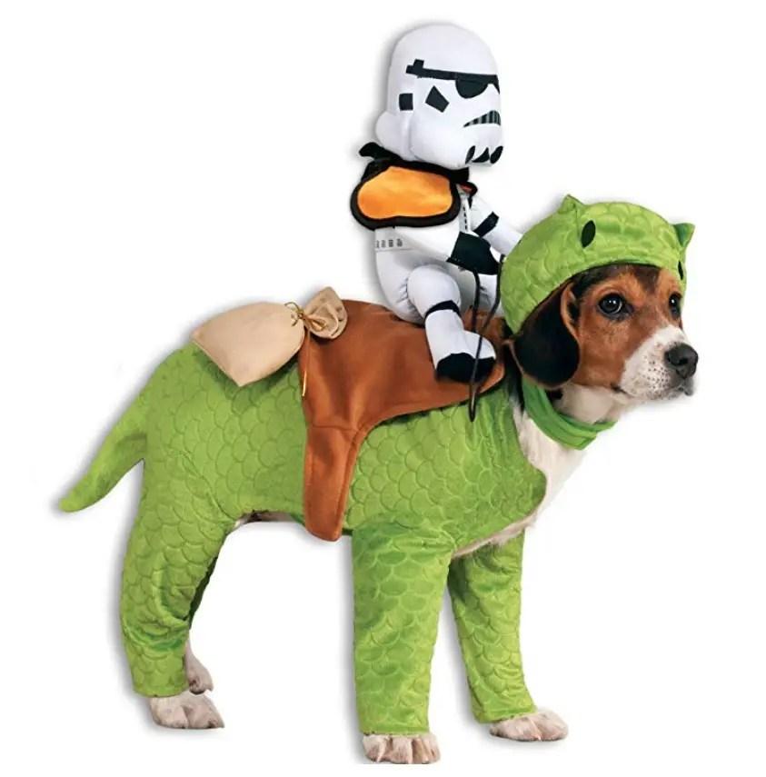 50 Best Small Dog Halloween Costumes