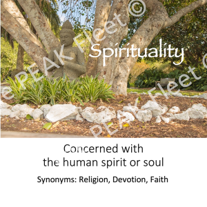 Spirituality: Concerned with the human spirit or soul.