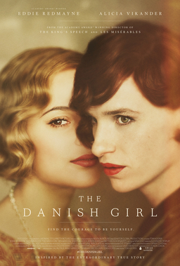 The Danish Girl Book Cover