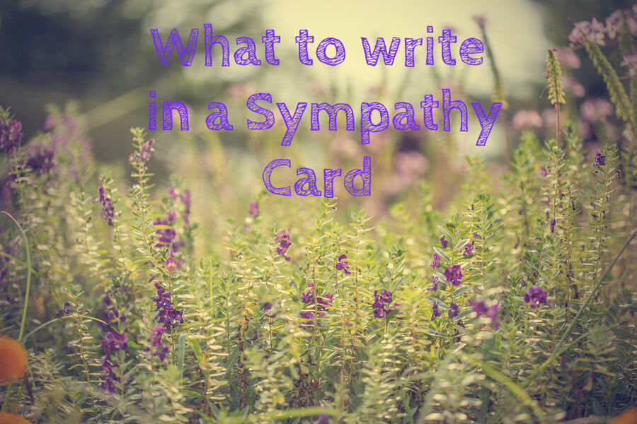 What to write in a Sympathy Card  The Pen Company Blog