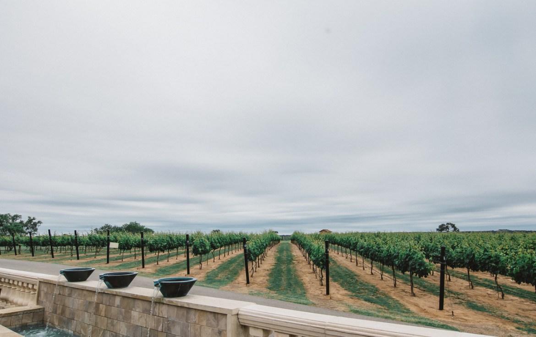 fredericksburg wineries