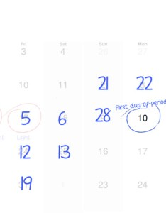 Did you get days period calendar also how to count your menstrual cycle the blog rh theperiodblog