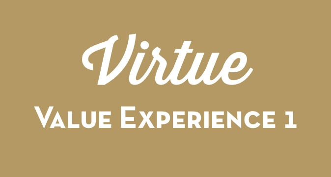 Virtue Value Experience 1