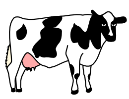about_cow