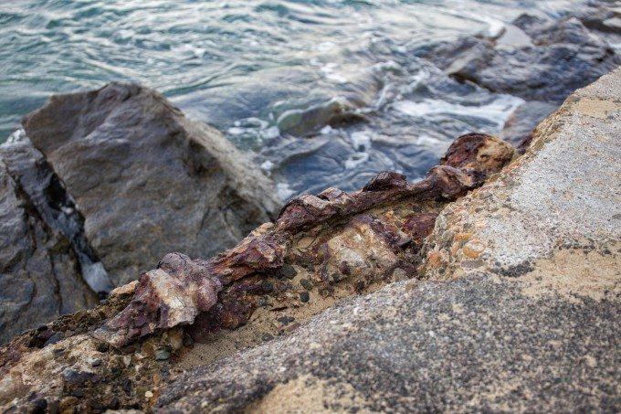 CDM Rocks