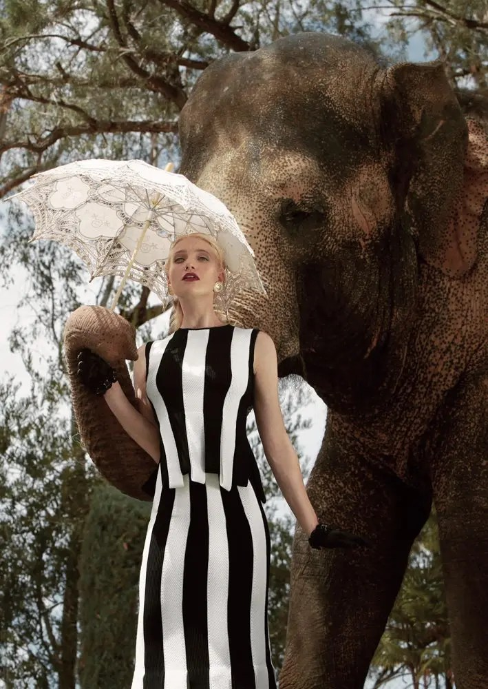 Autumn for the Elephants: Combining Fashion, Conservation