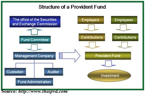 Usual Government Contributions of an Employee in Thailand | The Phoenix Capital Group
