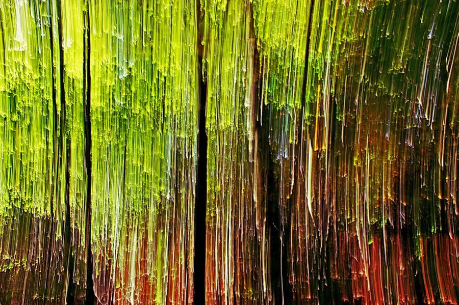 Isengardt - Abstract woods