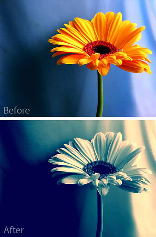 Useful Photoshop Actions