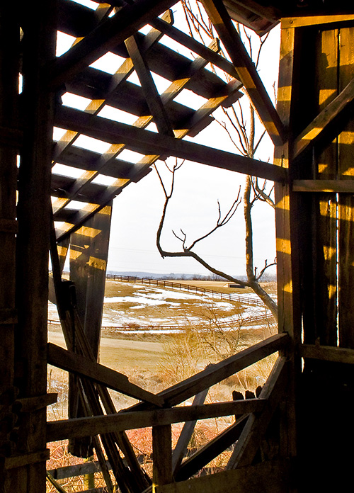 Barn-Looking-Out