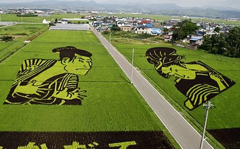 rice_art12.jpg