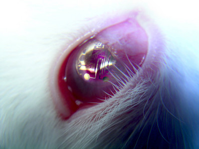 super-contacts-lenses-with-circuits.jpg