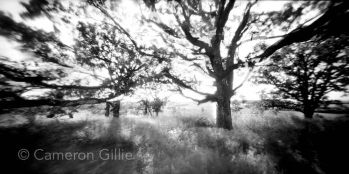 Pinhole photograph taken by Wisconsin fine art photographer Cameron Gillie.