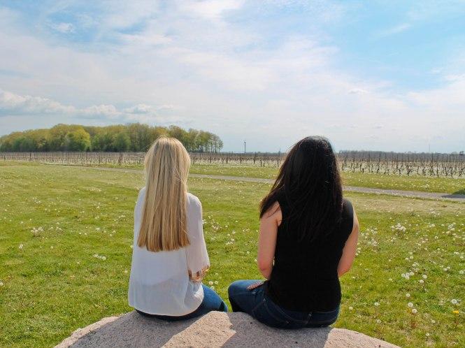 wineries 6