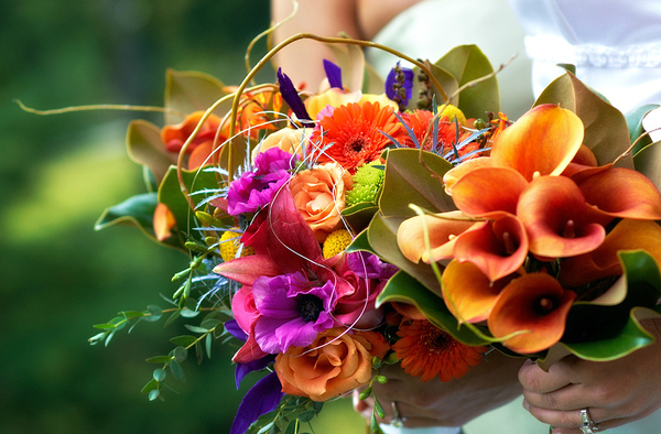 Rustic Fall Wallpaper Wedding Flowers Set The Theme With Your Bridal Bouquet