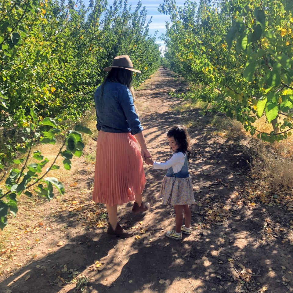 walking in the orchard on fall